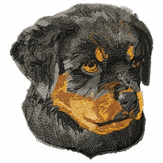 rott018 Rottweiler (small or large design)