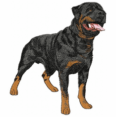 rott019 Rottweiler (small or large design)