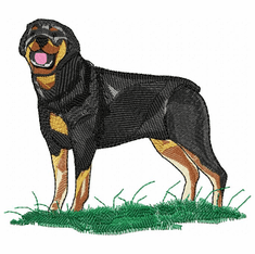 rott031 Rottweiler (small or large design)