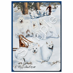 Samoyed Playing Cards