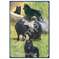 Schipperke Playing Cards