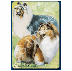 Sheltie (Shetland Sheepdog) Playing Cards