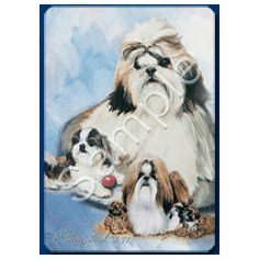 Shih Tzu Playing Cards