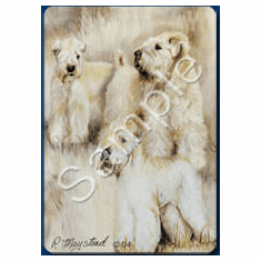 Soft Coated Wheaten Terrier Playing Cards
