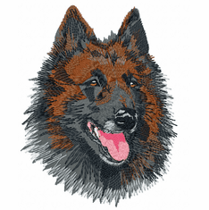terv003 Belgian Tervuren (small or large design)