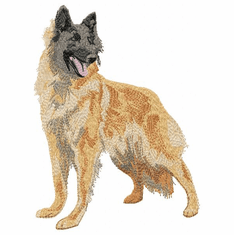 terv014 Belgian Tervuren (small or large design)