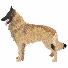 terv019 Belgian Tervuren (small or large design)