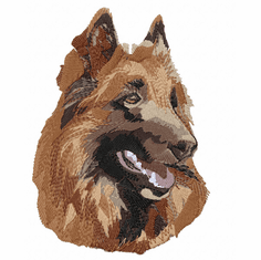 terv026 Belgian Tervuren (small or large design)