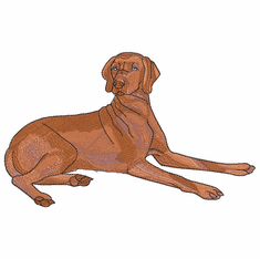 v011 Vizsla (small or large design)