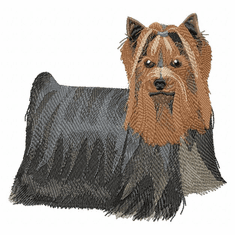 yorkie001 Yorkshire Terrier (small or large design)