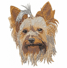 yorkie006 Yorkshire Terrier (small or large design)