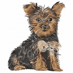 yorkie012 Yorkshire Terrier (small or large design)