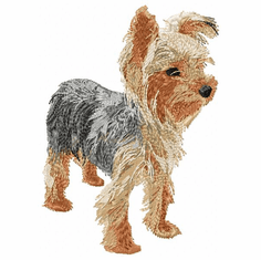 yorkie013 Yorkshire Terrier (small or large design)