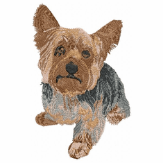 yorkie022 Yorkshire Terrier (small or large design)