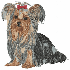 yorkie023 Yorkshire Terrier (small or large design)