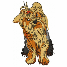 yorkie027 Yorkshire Terrier (small or large design)