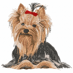 yorkie035 Yorkshire Terrier (small or large design)