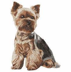 yorkie054 Yorkshire Terrier (small or large design)