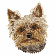 yorkie057 Yorkshire Terrier (small or large design)