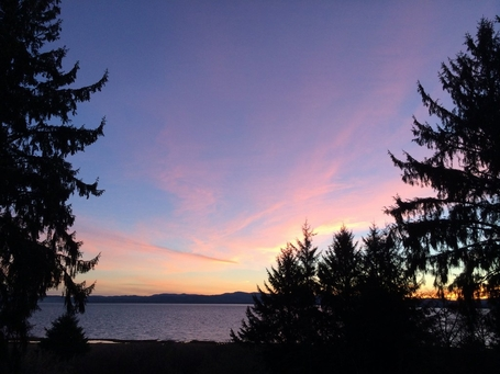 willapa bay sunrise 1