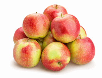 Apple fruit club free shipping 11 month Apple of the Month club membership
