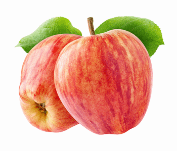9 months Apple Fruit Club with free shipping
