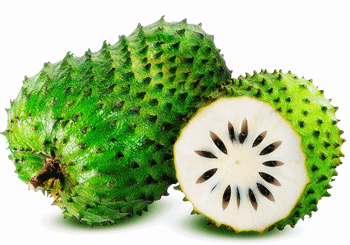 Fresh Soursop Fruit