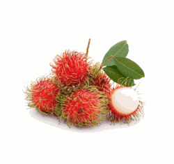 Hawaiian Rambutan fruit