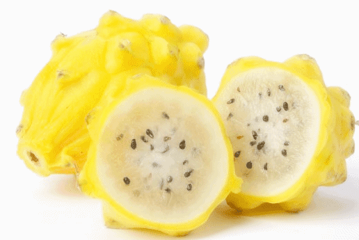 Yellow Dragon Fruits