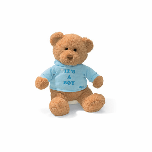 It's a Boy Sweatshirt Bear