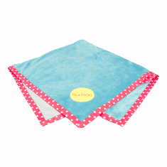 Reversible Aqua and Pink Stroller Blanket