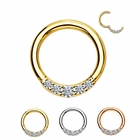 14K Gold Daith, Rook, Septum, Cartilage Jeweled Seamless Clicker Ring - 16G