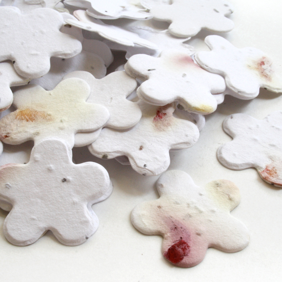 Free Sample of our Petalled Confetti