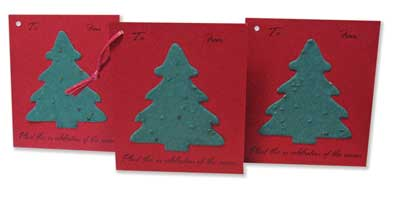Spruce Tree Flat Card Gift Tags