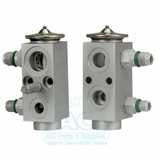 Expansion Valve OEM #: 1000534258
