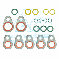 O-Ring & Gasket Kit OEM #: 2614861-C91