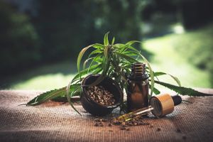 Does  Beauty and Wellness Love CBD? Awesome!