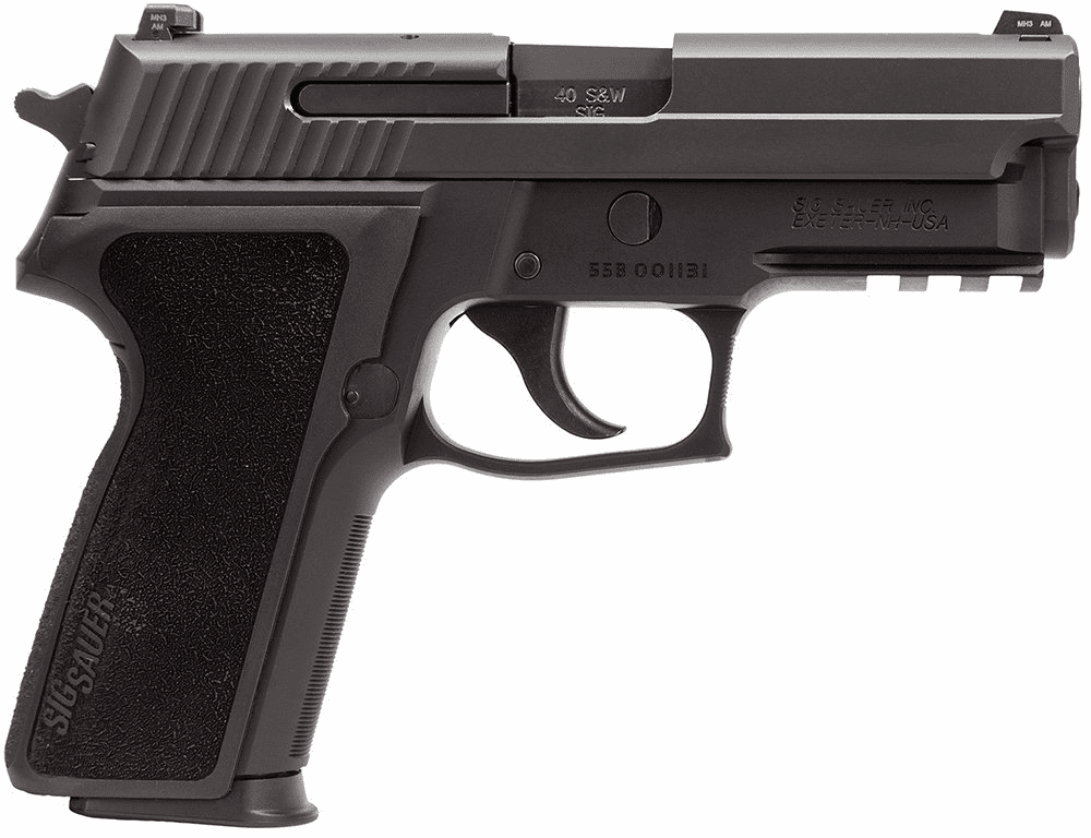 P229 (.40) Night Sights