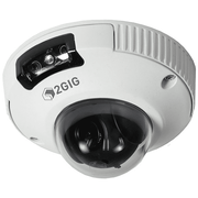 2GIG-CAM-250P - Outdoor HD Mini-Dome Security Camera FAQ's