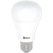 Smart Light Bulb Products