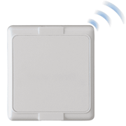 Wireless Asset Protection Devices