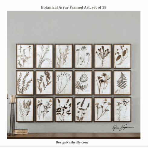 Botanical Array Framed Art, set of 18