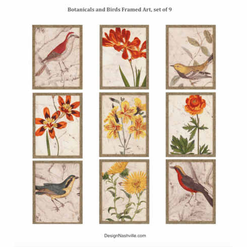 Botanicals and Birds Framed Art, set of 9