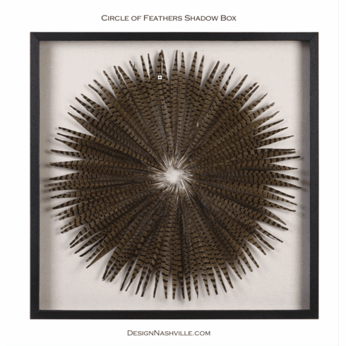 Circle of Pheasant Feathers Shadow Box