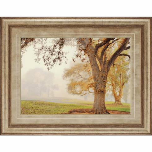 Clearing Mist Landscape II framed art