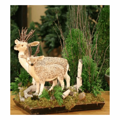 Deer in Cypress botanical arrangement
