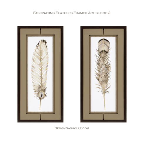 Fascinating Feathers Framed Art,<br> set of 2