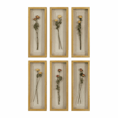 Long Stem Roses Shadow Boxes, <Br>set of 6