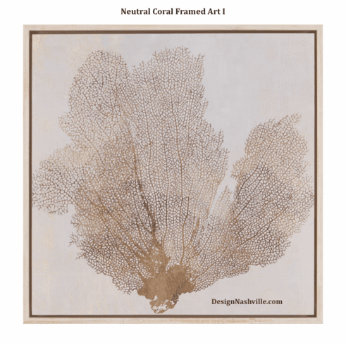 Neutral Coral Framed Art I
