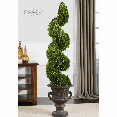 Xavier Preserved Boxwood Spiral Topiary